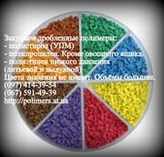 Купим дробленный полипропилен (ППР),  полистирол (ПС-УПМ).